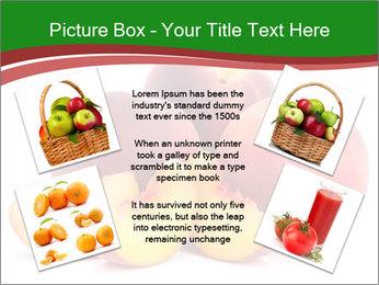 0000081490 PowerPoint Template - Slide 24