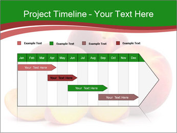0000081490 PowerPoint Template - Slide 25