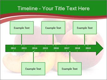 0000081490 PowerPoint Template - Slide 28