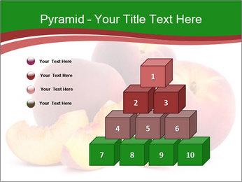 0000081490 PowerPoint Template - Slide 31