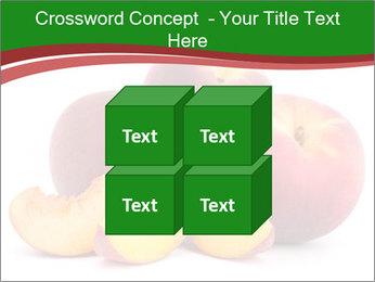 0000081490 PowerPoint Template - Slide 39