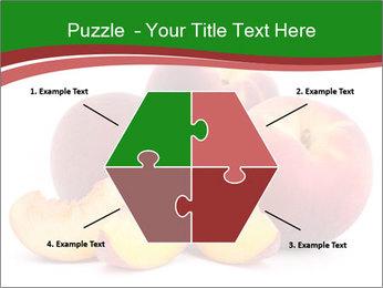 0000081490 PowerPoint Template - Slide 40