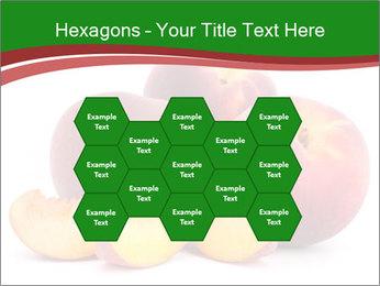 0000081490 PowerPoint Template - Slide 44