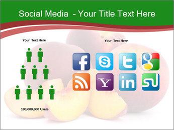 0000081490 PowerPoint Template - Slide 5