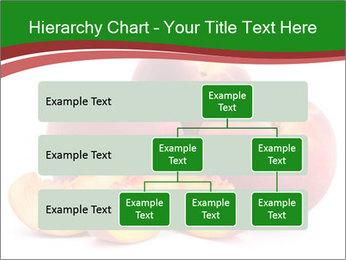 0000081490 PowerPoint Template - Slide 67