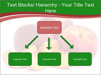 0000081490 PowerPoint Template - Slide 69