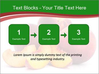 0000081490 PowerPoint Template - Slide 71