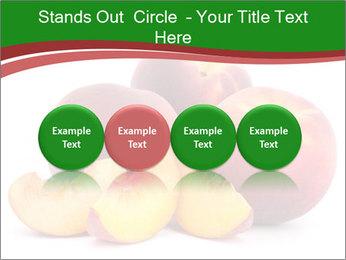 0000081490 PowerPoint Template - Slide 76