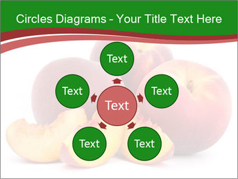 0000081490 PowerPoint Templates - Slide 78