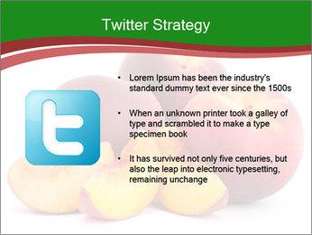 0000081490 PowerPoint Template - Slide 9