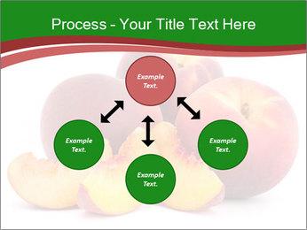 0000081490 PowerPoint Template - Slide 91