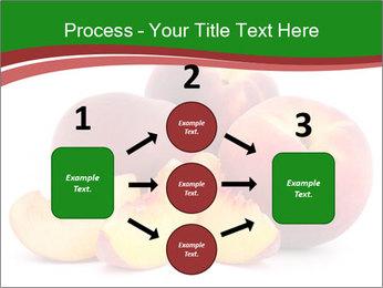 0000081490 PowerPoint Template - Slide 92
