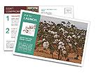 0000081491 Postcard Templates