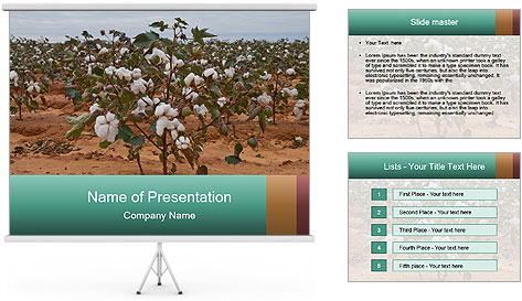 0000081491 PowerPoint Template
