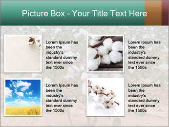 0000081491 PowerPoint Template - Slide 14