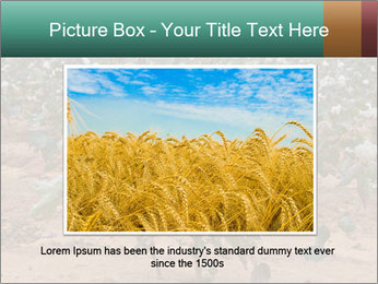 0000081491 PowerPoint Template - Slide 16