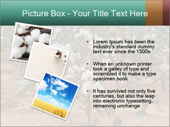 0000081491 PowerPoint Template - Slide 17