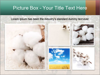 0000081491 PowerPoint Template - Slide 19