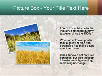 0000081491 PowerPoint Template - Slide 20