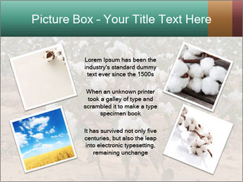 0000081491 PowerPoint Template - Slide 24