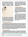 0000081491 Word Template - Page 4