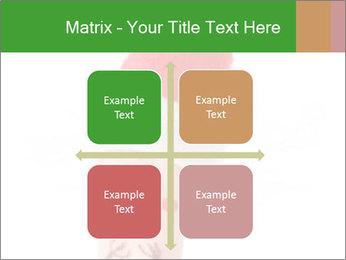 0000081501 PowerPoint Template - Slide 37