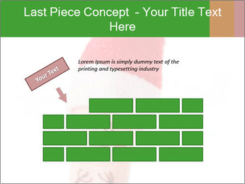 0000081501 PowerPoint Template - Slide 46