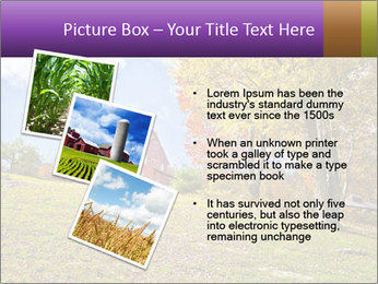 0000081505 PowerPoint Template - Slide 17