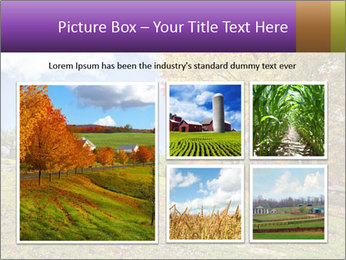 0000081505 PowerPoint Template - Slide 19