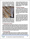 0000081515 Word Templates - Page 4