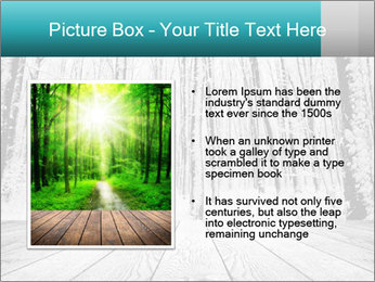 0000081516 PowerPoint Templates - Slide 13