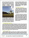 0000081520 Word Template - Page 4