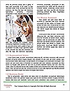 0000081521 Word Template - Page 4