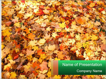 0000081525 PowerPoint Template