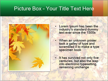 0000081525 PowerPoint Template - Slide 13