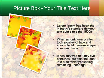0000081525 PowerPoint Template - Slide 17