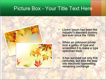 0000081525 PowerPoint Template - Slide 20