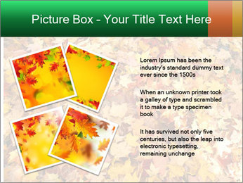 0000081525 PowerPoint Template - Slide 23