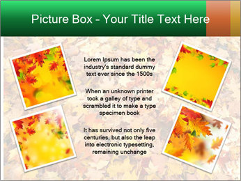 0000081525 PowerPoint Template - Slide 24