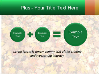 0000081525 PowerPoint Template - Slide 75