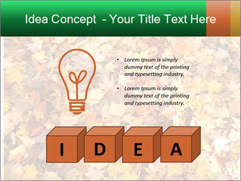0000081525 PowerPoint Template - Slide 80