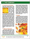 0000081525 Word Template - Page 3