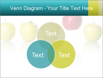 0000081533 PowerPoint Template - Slide 33