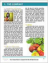 0000081533 Word Template - Page 3