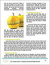 0000081533 Word Templates - Page 4