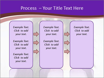 0000081536 PowerPoint Templates - Slide 86