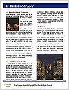0000081537 Word Template - Page 3