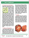 0000081541 Word Templates - Page 3