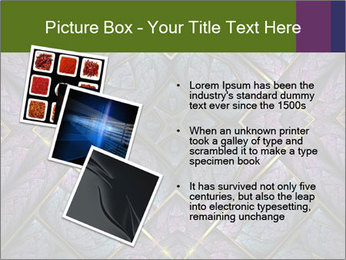 0000081547 PowerPoint Template - Slide 17