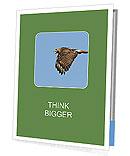 0000081549 Presentation Folder